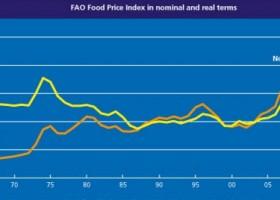 全球食品价格为何上涨